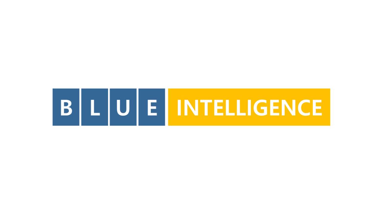 블루인텔리전스 서비스 대표 이미지